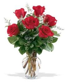Konya çiçek online çiçek siparişi  7 adet kirmizi gül cam yada mika vazoda sevenlere