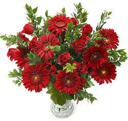 5 adet kirmizi gül 5 adet gerbera aranjmani  Konya çiçek yolla , çiçek gönder , çiçekçi