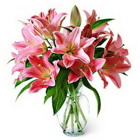 3 dal kazablanka görsel vazosu  Konya çiçekçi telefonları