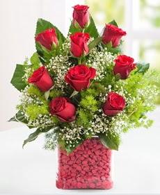 Cam içerisinde 9 adet kırmızı gül  Konya çiçek yolla
