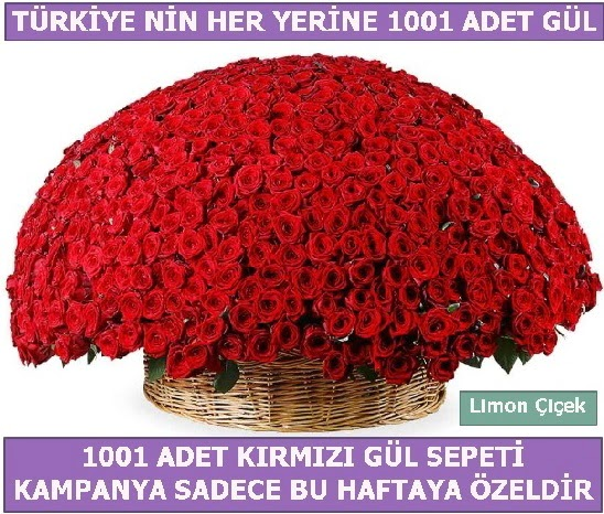 1001 Adet kırmızı gül Bu haftaya özel  Konya hediye sevgilime hediye çiçek