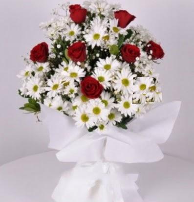 7 adet kırmızı gül ve papatyalar krizantem  Konya çiçek yolla