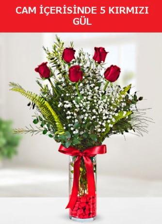 Cam içerisinde 5 adet kırmızı gül  Konya çiçek gönderme sitemiz güvenlidir
