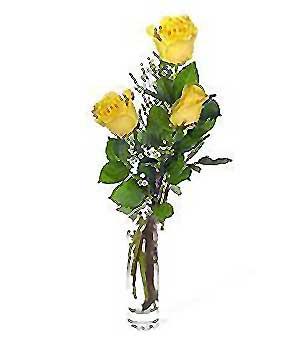 Konya çiçekçi telefonları  3 adet kalite cam yada mika vazo gül