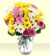Konya çiçekçi telefonları  mevsim çiçekleri mika yada cam vazo