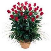 Konya çiçekçi mağazası  10 adet kirmizi gül cam yada mika vazo