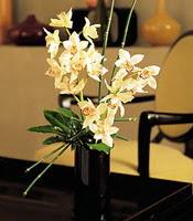 Konya çiçek gönderme  cam yada mika vazo içerisinde dal orkide