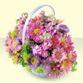 Konya uluslararası çiçek gönderme  bir sepet dolusu kir çiçegi  Konya çiçek online çiçek siparişi