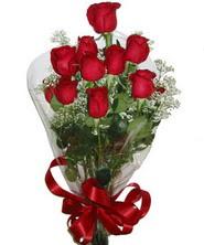 9 adet kaliteli kirmizi gül   Konya 14 şubat sevgililer günü çiçek