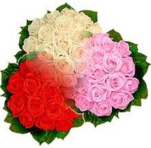 3 renkte gül seven sever   Konya yurtiçi ve yurtdışı çiçek siparişi