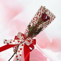 tek bir adet gül seffafta   Konya İnternetten çiçek siparişi