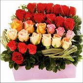 15 adet renkli gül ve cam   Konya İnternetten çiçek siparişi