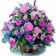 karisik mevsim kir çiçekleri  Konya çiçek online çiçek siparişi