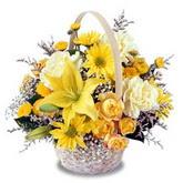 sadece sari çiçek sepeti   Konya çiçek online çiçek siparişi