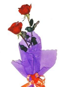 2  adet kirmizi gül buketi   Konya yurtiçi ve yurtdışı çiçek siparişi