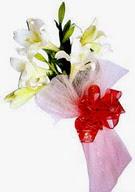 Konya yurtiçi ve yurtdışı çiçek siparişi  ince vazoda gerbera ve ayi
