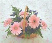 gerbera çiçeklerinde sepet   Konya çiçek servisi , çiçekçi adresleri