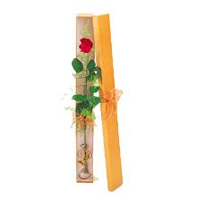 ince  kutuda  1  gül   Konya çiçek servisi , çiçekçi adresleri