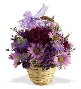 Konya çiçekçi mağazası  sepet içerisinde krizantem çiçekleri