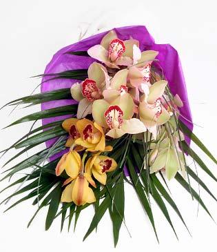 Konya hediye çiçek yolla  1 adet dal orkide buket halinde sunulmakta