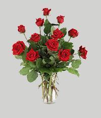 Konya hediye çiçek yolla  11 adet kirmizi gül vazo halinde