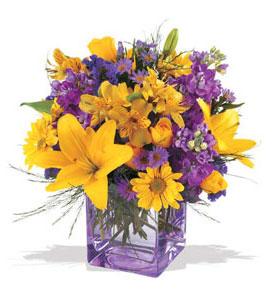 Konya online çiçek gönderme sipariş  cam içerisinde kir çiçekleri demeti