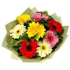 9 adet karisik gerbera demeti  Konya online çiçek gönderme sipariş