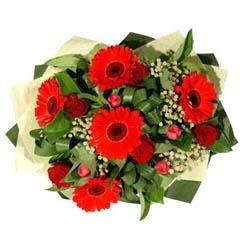Konya online çiçekçi , çiçek siparişi   5 adet kirmizi gül 5 adet gerbera demeti
