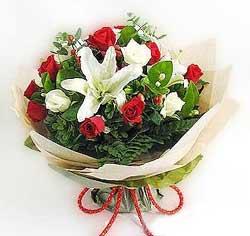 güller ve kazablanklardan görsel bir buket  Konya çiçek yolla