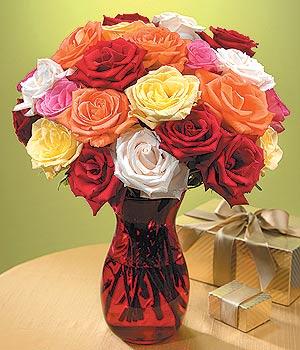Konya internetten çiçek satışı  13 adet renkli gül