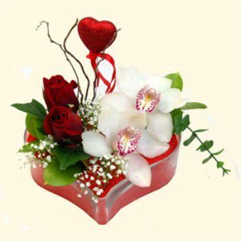 Konya çiçekçiler  1 kandil orkide 5 adet kirmizi gül mika kalp