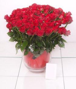 Konya ucuz çiçek gönder  101 adet kirmizi gül