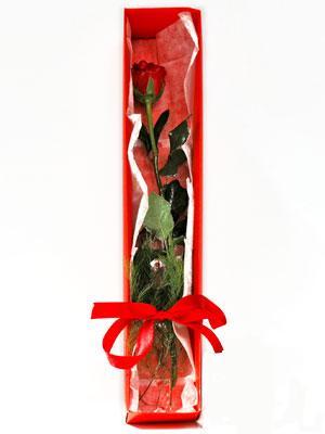 Konya uluslararası çiçek gönderme  1 adet kutuda gül