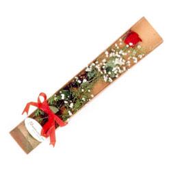 Konya yurtiçi ve yurtdışı çiçek siparişi  Kutuda tek 1 adet kirmizi gül çiçegi
