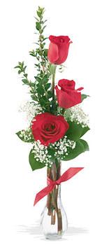 Konya hediye çiçek yolla  mika yada cam vazoda 3 adet kirmizi gül