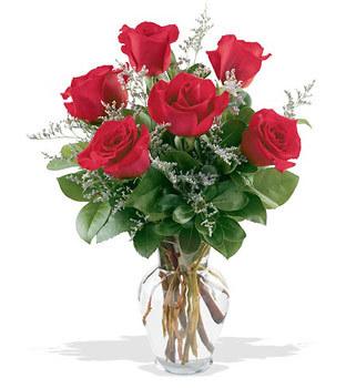 Konya hediye çiçek yolla  cam yada mika vazoda 6 adet kirmizi gül