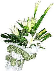 Konya cicekciler , cicek siparisi  3 dal kazablanka çiçegi ve yesillikler