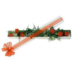 Konya çiçek gönderme sitemiz güvenlidir  6 adet kirmizi gül kutu içerisinde