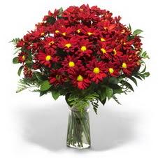 Konya çiçek servisi , çiçekçi adresleri  Kir çiçekleri cam yada mika vazo içinde