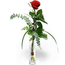 Konya çiçek siparişi sitesi  Sana deger veriyorum bir adet gül cam yada mika vazoda