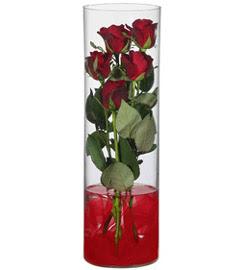 cam içerisinde 7 adet kirmizi gül  Konya çiçek gönderme
