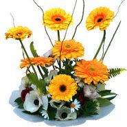 camda gerbera ve mis kokulu kir çiçekleri  Konya kaliteli taze ve ucuz çiçekler