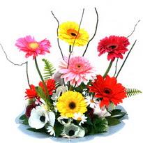 Konya çiçek yolla , çiçek gönder , çiçekçi   camda gerbera ve mis kokulu kir çiçekleri