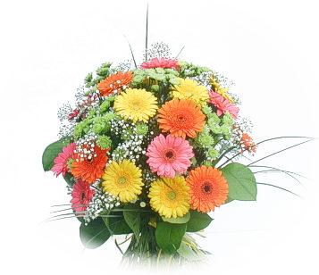 13 adet gerbera çiçegi buketi  Konya çiçek , çiçekçi , çiçekçilik