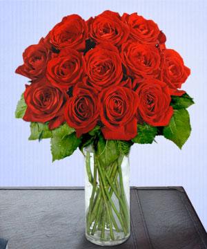 Anneme 12 adet cam içerisinde kirmizi gül  Konya çiçek gönderme sitemiz güvenlidir