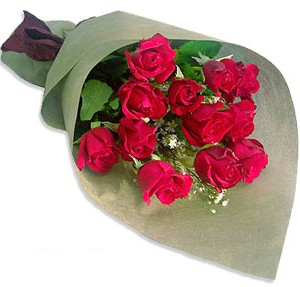 Uluslararasi çiçek firmasi 11 adet gül yolla  Konya online çiçek gönderme sipariş