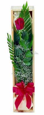 Sade ve gösterisli kutu içerisinde tek gül  Konya İnternetten çiçek siparişi