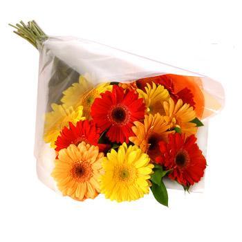 Karisik renklerde gerbera buketi  Konya hediye çiçek yolla