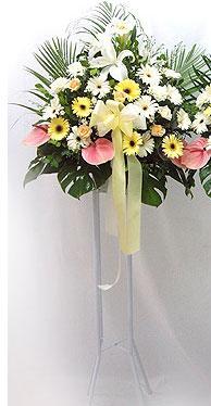 Konya çiçek , çiçekçi , çiçekçilik   perförje çiçegi dügün çiçekleri