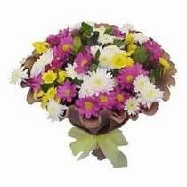 Konya kaliteli taze ve ucuz çiçekler  Mevsim kir çiçegi demeti